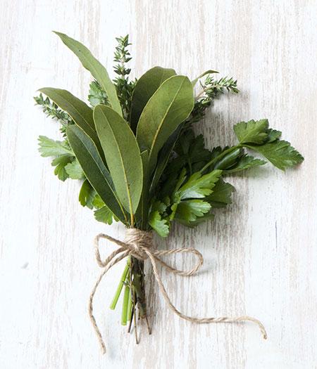 herb correspondences – venusdemilotic